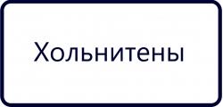 Хольнитены (2)